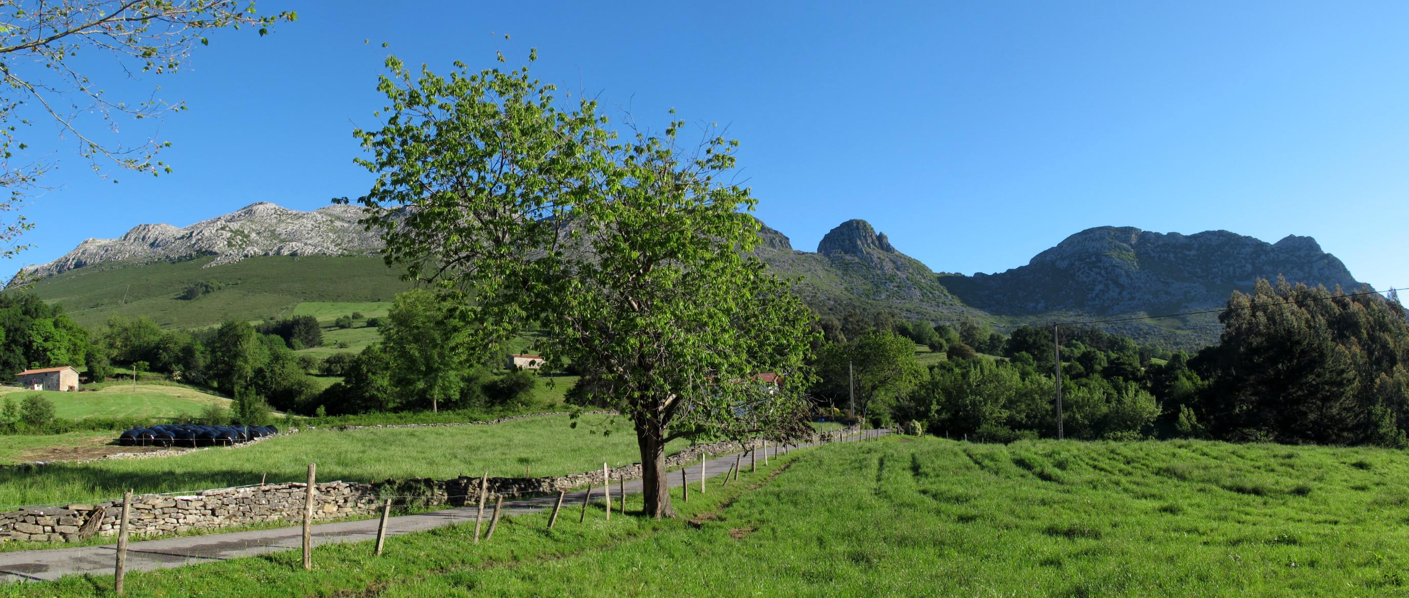 La pista que lleva a Manzaneda con nuestros montes detrás.