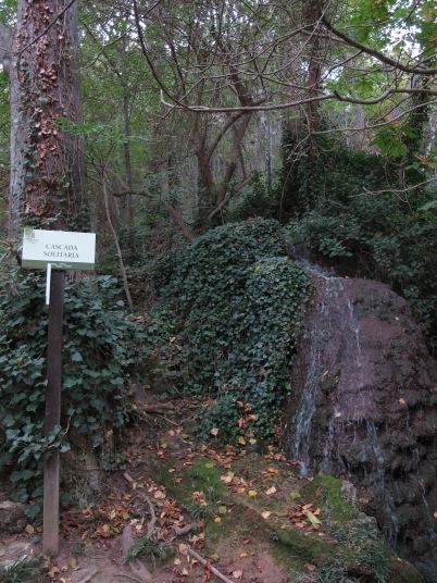 Cascada Solitaria.